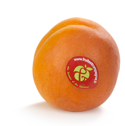 Abricot Fruit &compagnie