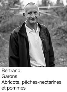 Bernard Garons Abricots et pêches-nectarines, arboriculteur Fruits&Compagnie