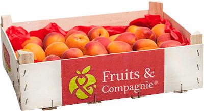 plateau abricot héritage de nos terroirs Fruits&compagnie