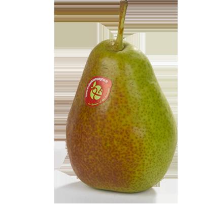 Poire Louise bonne - Poires Fruit & compagnie