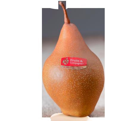 Poire Martin Sec - Poires Fruits & compagnie