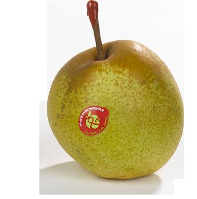 Poire passe crassane - Poires Fruit &compagnie