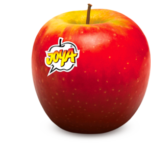 Pomme Joya Cripps Red - pommes Fruits & compagnie