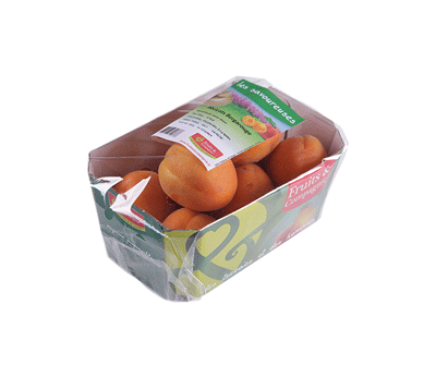 barquette 650g abricots - gamme solutions consommateurs Fruit&compagnie