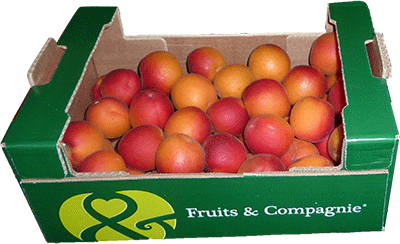 Plateau vrac abricot Fruit&compagnie - gamme plateaux