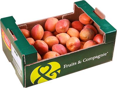 plateau familial abricots - gamme solutions consommateurs Fruit&compagnie