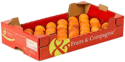 Plateau plaisir abricot Fruit&compagnie - gamme plateaux