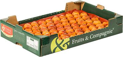 Plateau abricots Fruit&compagnie - gamme plateaux