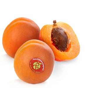 Abricots Fruits & Compagnie