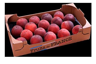 plateau familial pêche jaunes / blanches Fruit&compagnie