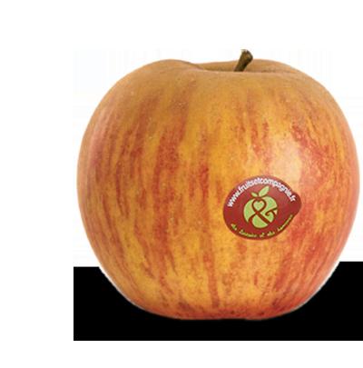 Pomme reine des reinettes - pommes Fruit &compagnie