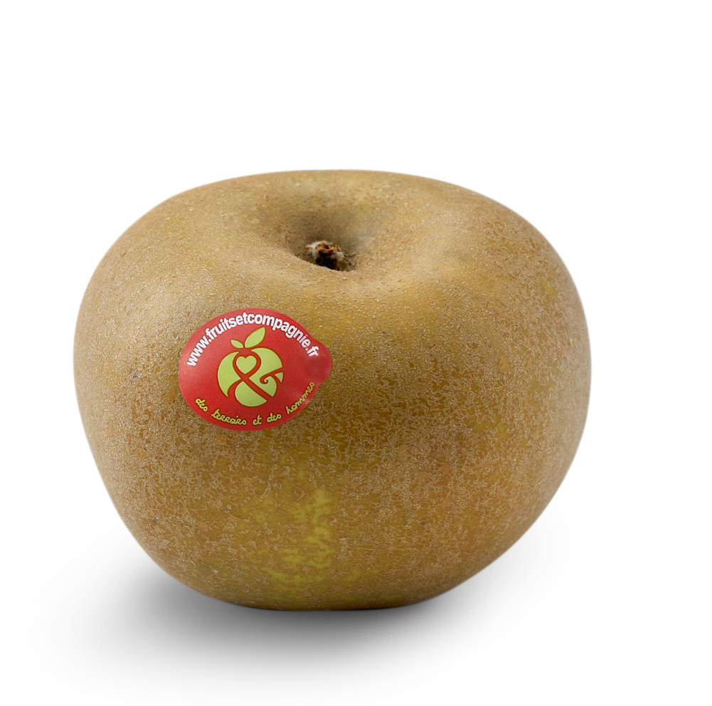 Pomme Reinette Grise Canada - pommes Fruit &compagnie