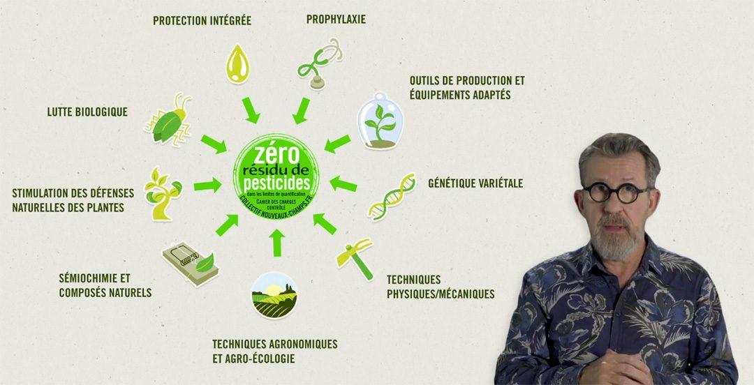 Tout comprendre sur nos méthodes pour atteindre le zéro résidu de pesticides