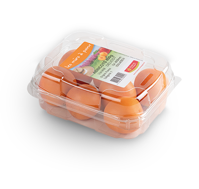 barquette 400g abricots - gamme solutions consommateurs Fruit&compagnie