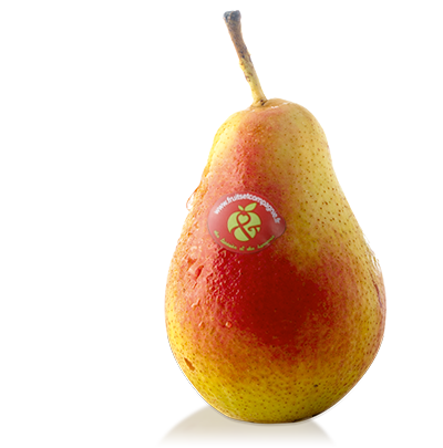 Poire Fred - Poires Fruits & compagnie